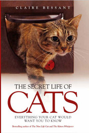 The Secret Life of Cats by Claire Bessant