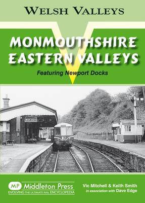 Monmouthshire Eastern Valley: Featuring Newport Docks by Vic Mitchell
