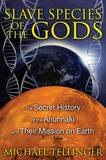Slave Species of the Gods by Michael Tellinger