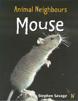 British Animals: Mouse by Stephen Savage image