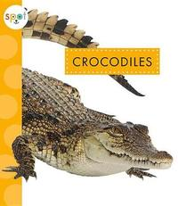Crocodiles by Mary Ellen Klukow