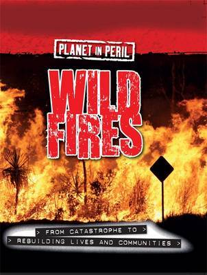 Planet in Peril: Wild Fires by Cath Senker image
