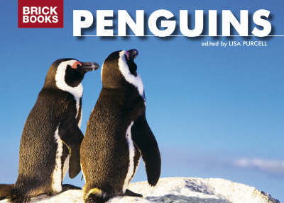 Penguins by Lisa Purcell image