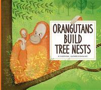 Orangutans Build Tree Nests by Elizabeth Raum
