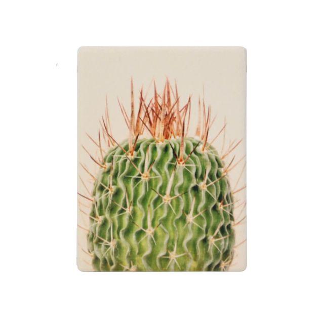 Splosh: Natural Oasis Spiky Ceramic Magnet