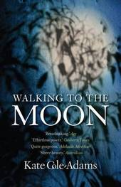 Walking to the Moon by Kate Cole-adams image
