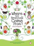 Where Does Broccoli Come From? a Book of Vegetables by Arielle Dani Lebovitz