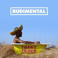 Toast To Our Differences by Rudimental