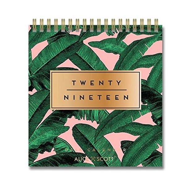 Alice Scott: 2019 Desk Calendar