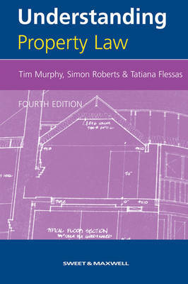 Understanding Property Law by Tatiana Flessas image