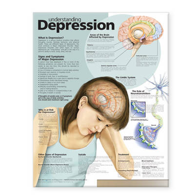 Understanding Depression Anatomical Chart