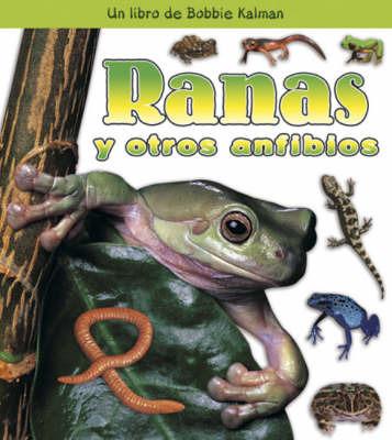Ranas y Otros Anfibios by Bobbie Kalman image