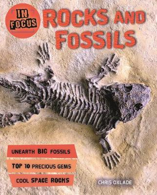 In Focus: Rocks and Fossils by Chris Oxlade