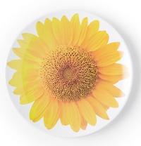 Kate Spade: Salad Plate - Floral