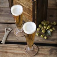 Pilsner Beer Serving Gift Set for 2