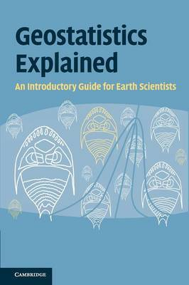 Geostatistics Explained by Steve McKillup image