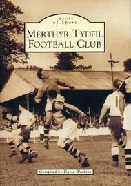 Merthyr Tydfil Football Club by David Watkins image