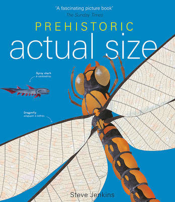 Prehistoric Actual Size by Steve Jenkins