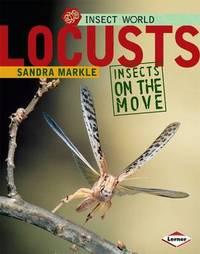 Locusts by Sandra Markle image