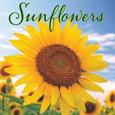Sunflowers 2020 Wall Calendar by Willow Creek Press