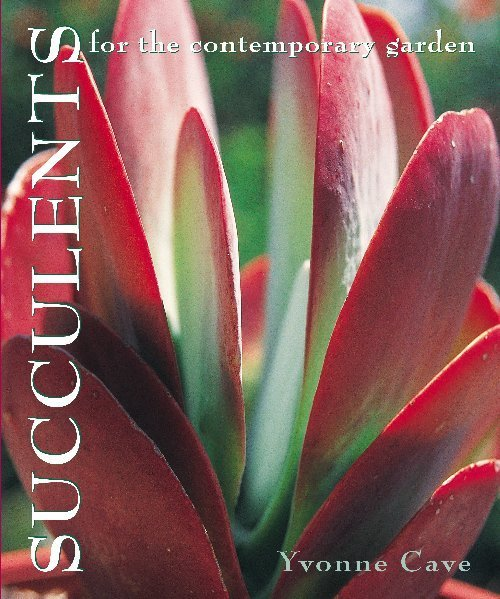 Succulents for the Contemporary Garden by Yvonne Cave