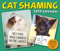Cat Shaming 2019 Day-to-Day Calendar by Pedro Andrade