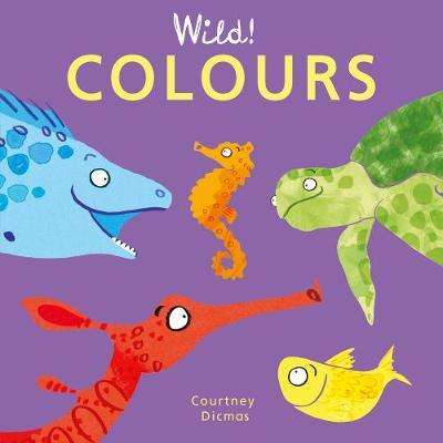 Colours by Courtney Dicmas