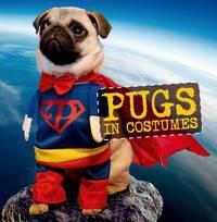 Pugs in Costumes by Virginia Woof