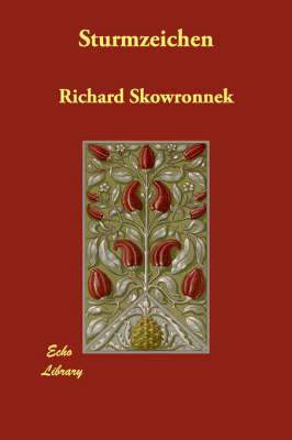 Sturmzeichen by Richard Skowronnek image