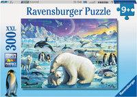 Ravensburger - Meet The Polar Animals Puzzle (300pc)