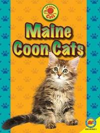 Maine Coon Cats by Nancy Furstinger image