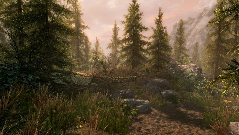 The Elder Scrolls V: Skyrim Special Edition for PS4 image