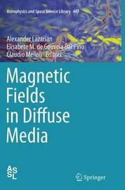 Magnetic Fields in Diffuse Media
