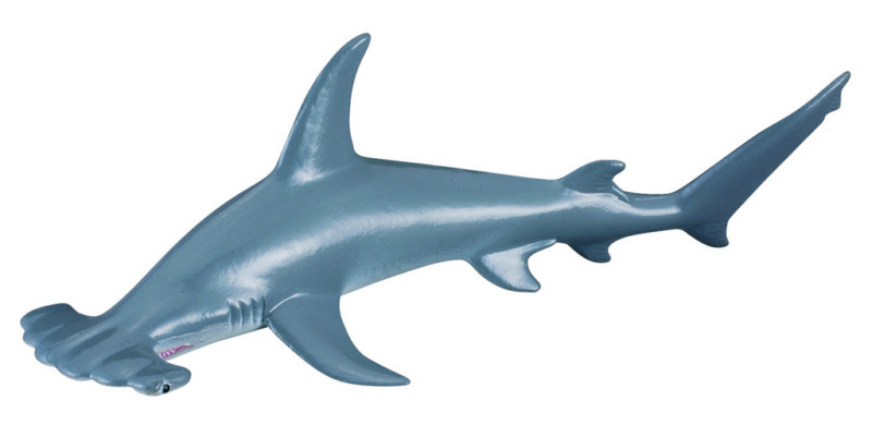 CollectA - Hammerhead Shark image