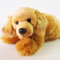 Dog: Josie Golden Retriever 25Cm