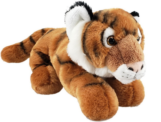 Antics: Tiger