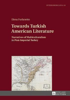 Towards Turkish American Literature by Elena Furlanetto image