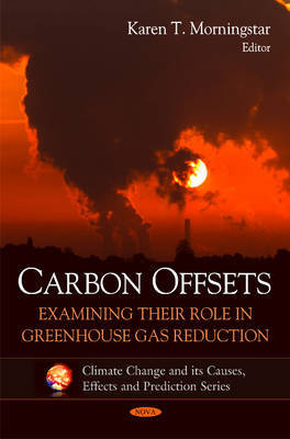 Carbon Offsets image