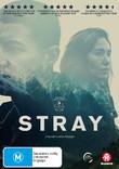 Stray on DVD