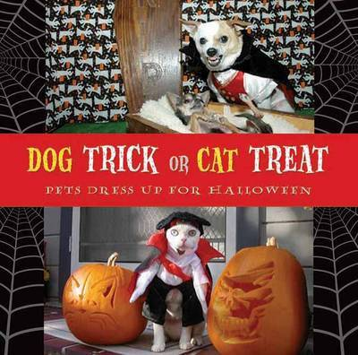 Dog Trick Or Cat Treat by Archie Klondike