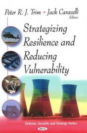 Strategizing Resilence & Reducing Vulnerability image