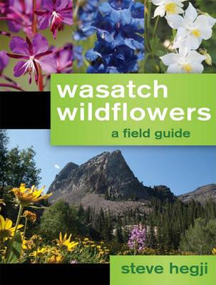 Wasatch Wildflowers by Steve Hegji