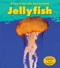 Jellyfish by Louise A Spilsbury