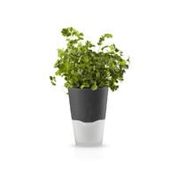 Self-Watering Herb Pot - 11cm (Stone Grey)