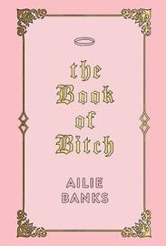 The Book of Bitch by Ailie Banks image