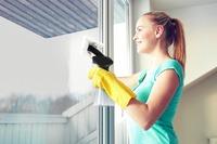 Kogan: Window Vacuum Cleaner
