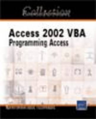 VBA Access 2002 IT Resources by Michele Amelot