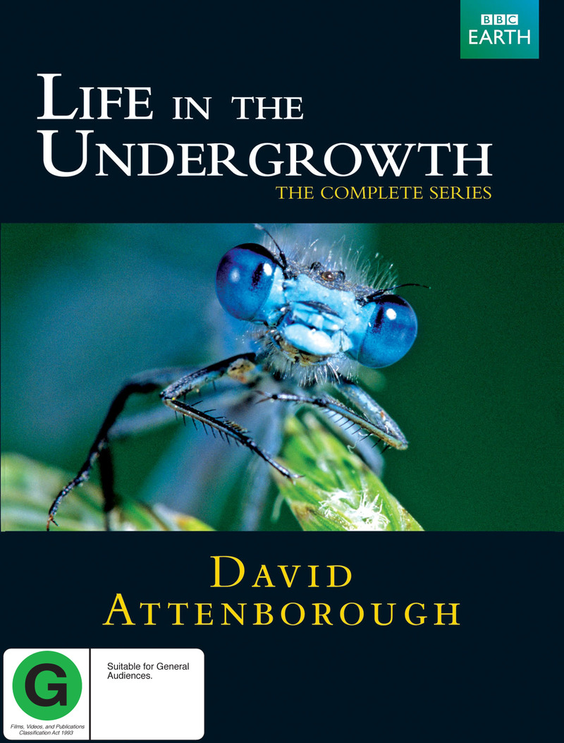 Life in the Undergrowth - The Complete Series on DVD image