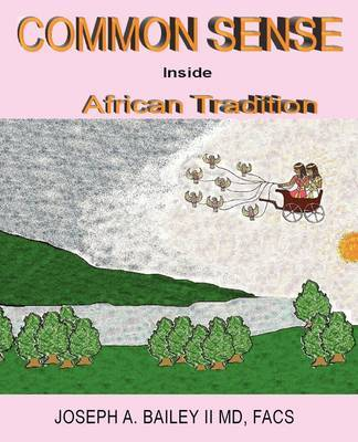 Common Sense Inside African Tradition by Joseph A Bailey image