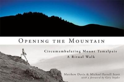Opening the Mountain by Matthew Davis image